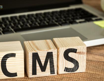 Изработка на Къстъм уеб сайт (CMS)